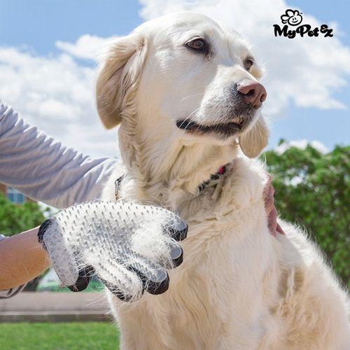 Vyčesávacia rukavica pre psov My Pet Petter